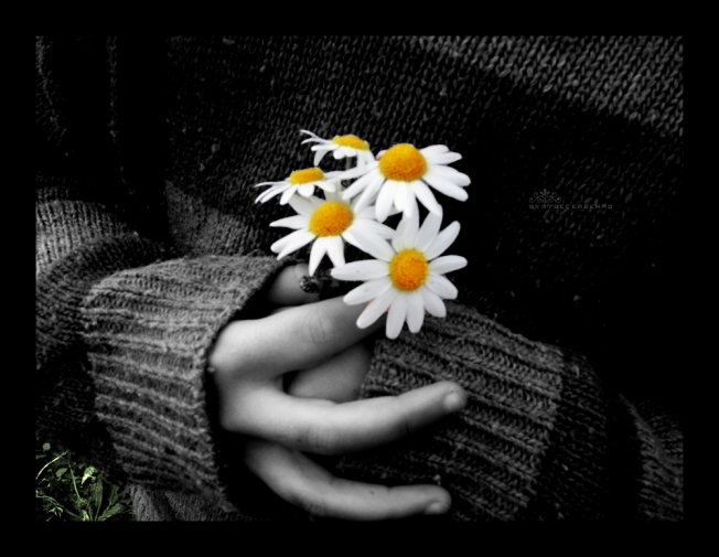 The_World__s_Like_a_Flower_by_mydecember90