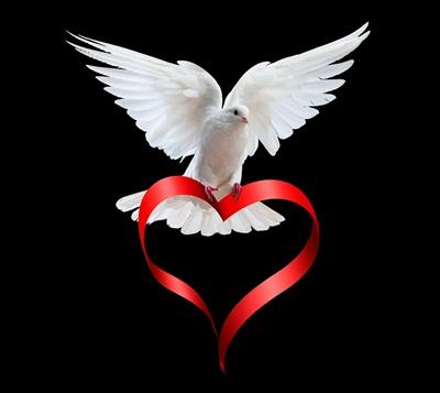 Heart-love-32058194-400-357 (1)